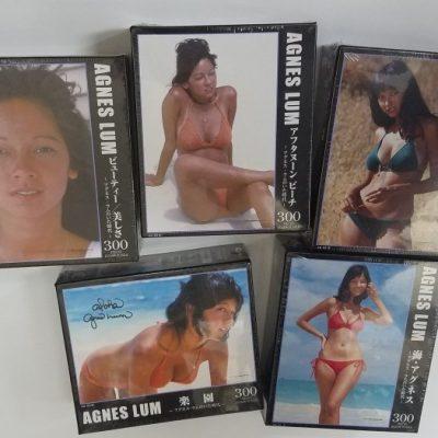 Agnes Lum Jigsaw